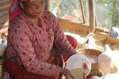 Poultry-Rearing-by-Person-with-Disability-at-Rautbesi-Nuwakot-Medium