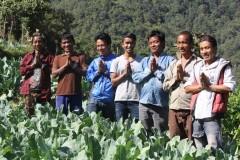 Vegetable-Farming-by-Farmer-Group-Members-at-Dandakharka-Makawanpur-6-Medium