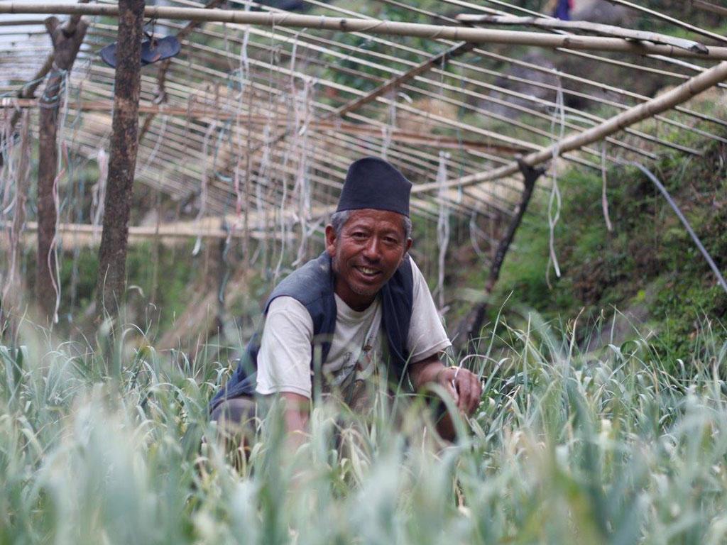 Samar Bdr. Tamang, Banchhar FAG(Chairperson) (6)