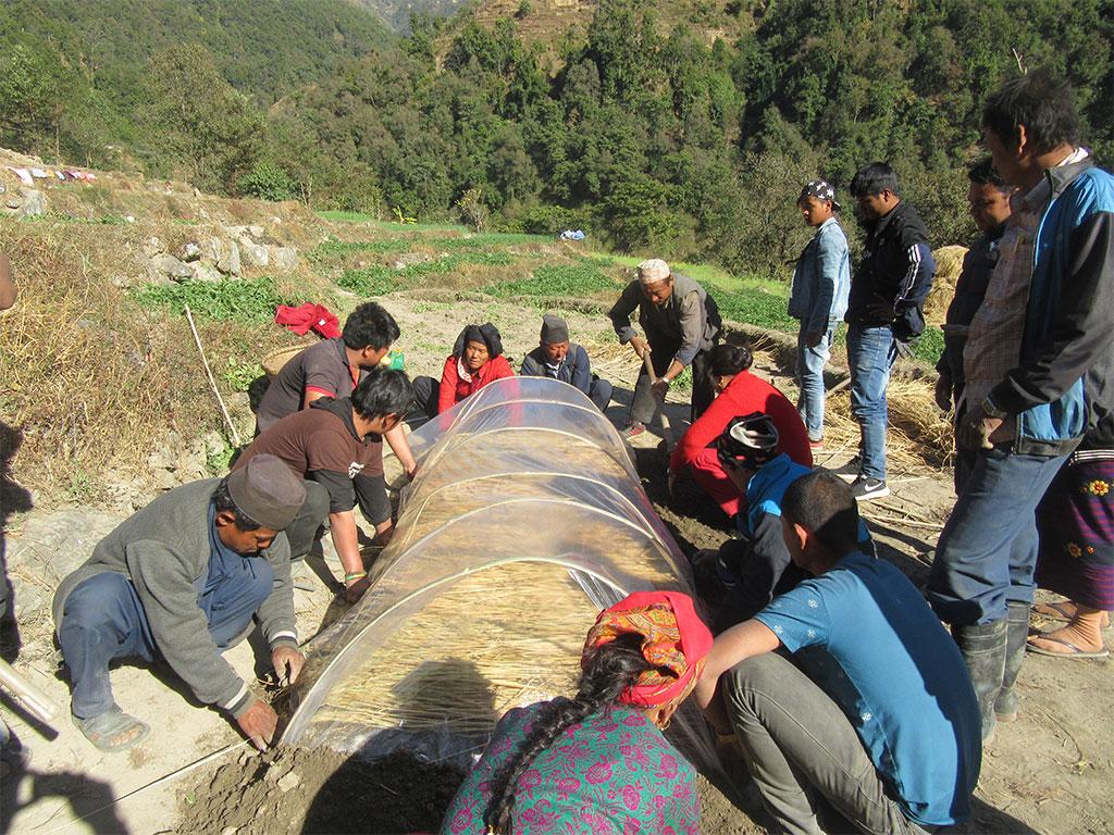 Commercial Vegetable Farming Training & Nursary Establishment at Rautbesi, Nuwakot (2)